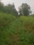 Nat graspad langs De Saar