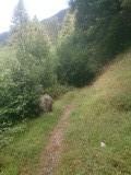 Ook dit pad leidt naar Rome