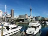 4 mio Kiwi's 1 mio boten