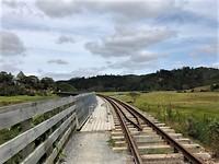 Over een oude treinrails door het drassige land