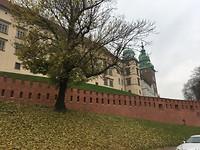 Castle krakau