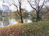 herfst parkje
