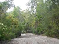 Zandpad op Fraser Island