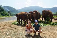 In het elephant nature park
