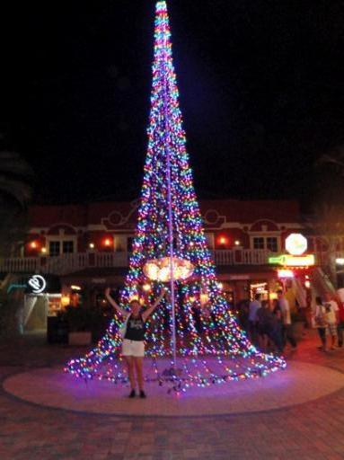 Kerstboom Van Lichtjes Foto Zonnig Aruba
