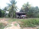 3) Zo zien de meeste Cambodjaanse huizen eruit