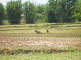4) Ploeg wordt nog met de hand aangedreven