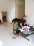 17) Een paar dagen op twee hele lieve honden passen
