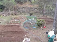 6) De tuin wordt groter