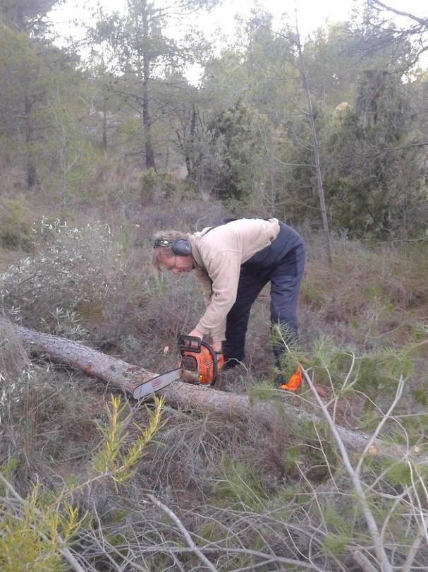 4) Hij zaagt bomen om