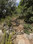 20) Leuke trap voor een veel gebruikte route