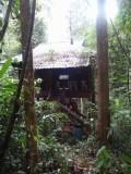 1) Ons hutje in de jungle