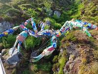 Krab  van afval uit zee