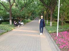 Wandelen in het park richting hotel