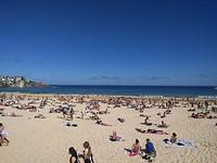Bondi Beach!