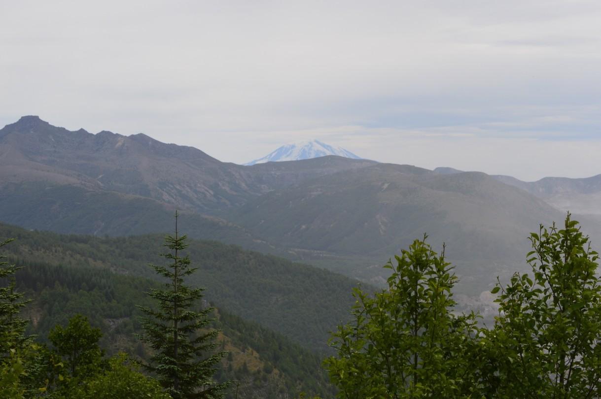 Mount Rainier in the distance