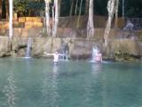 slappe waterval
