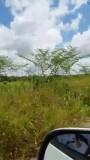 Bezoek Plantage Adrichem.