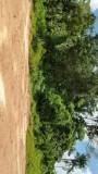 Bezoek Plantage Adrichem 3