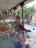 Bicycle stand for some minor repairs and adjustments