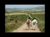 Camino de Santiago SPPQ