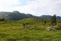 IMG_4376_Noorwegen2019