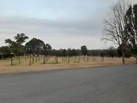 Landschap Hunter Valley