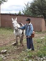 Iggy met paard