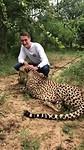 cheeta aaien
