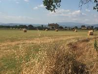 Assisi regio