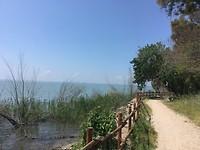 Prima fietspad langs het meer