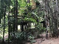 Dat is hem dan. Onze Coconut treehouse.....