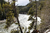 48. Yellowstone River