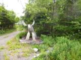 Toch weer wild op de route,stenen Moose