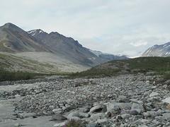 Uitzicht op de Gakona Glacier
