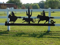 Rodeo in Beggs