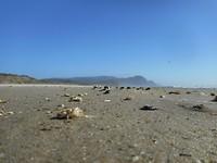 Zandverstuivingen