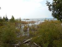 Uitzicht over Lake Huron