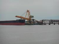 Steenkool terminal