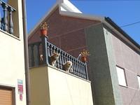 Begroeting in Unhais de Serra