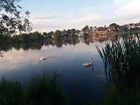 Staan bij het meer