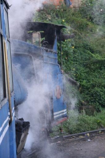 Joy train