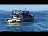 Dag 16: Walvissen en dolfijnen spotten