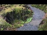 Dag 22: Tongariro National Park
