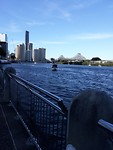 Brisbane sky line