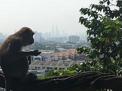 Uitzicht op Kuala Lumpur