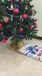 Kado onder de kerstboom