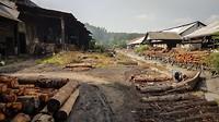 Omgeving houtskoolfabriek