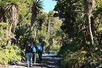 Bij Mount Taranaki