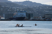 Wellington 10